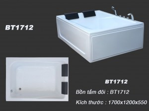 bt171229